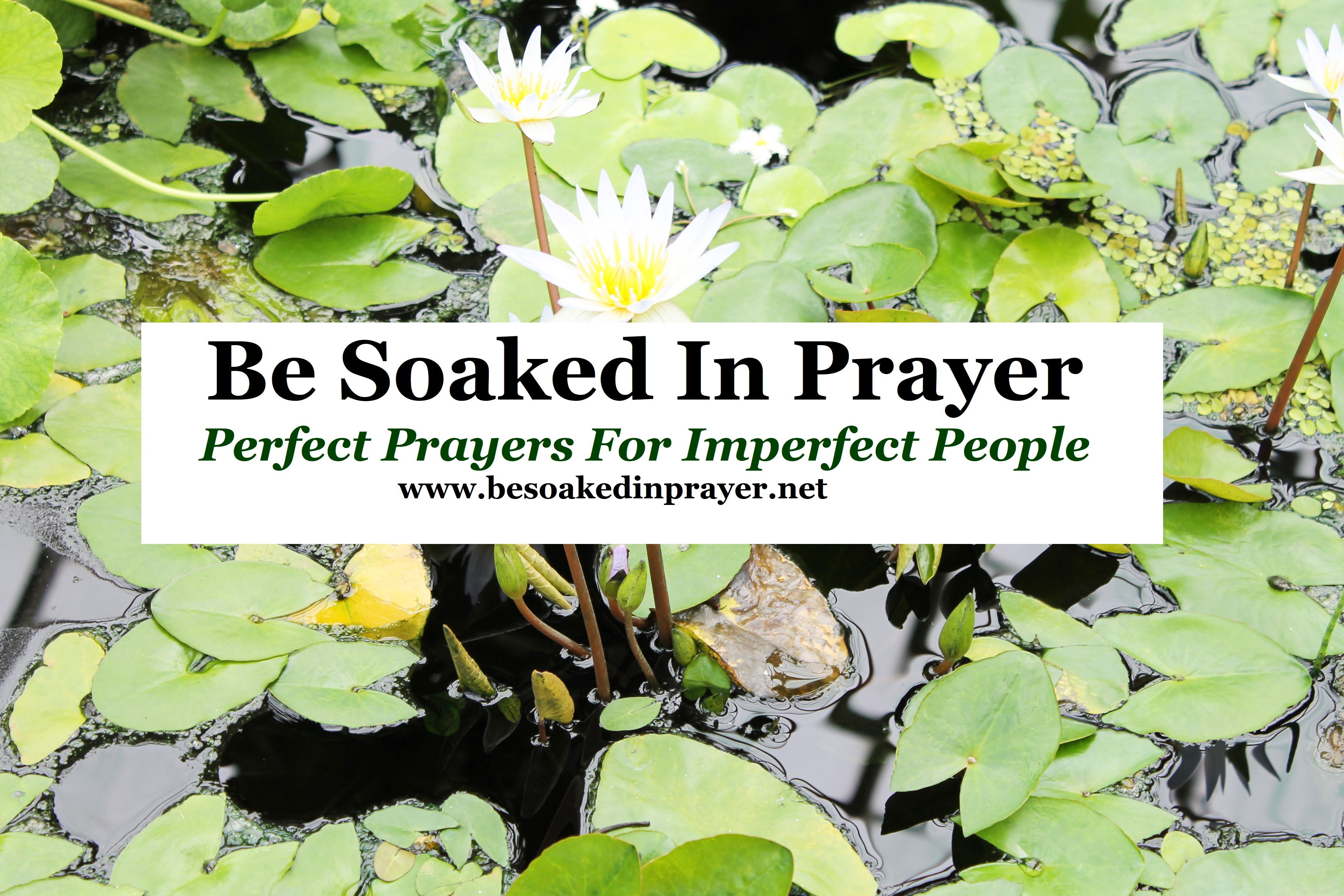 Be Soaked In Prayer